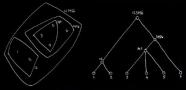 Cấu trúc cây phả hệ: Không có sự chồng lấn nào giữa các đơn vị. Nguồn: Alexander, 1964