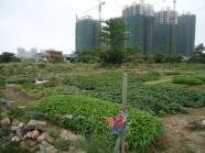 riverside-garden-2-haikou