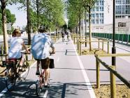 Không gian công cộng có chất lượng cao sẽ khuyến khích mọi người tham gia các hoạt động ngoài trời và đi bộ. Nguồn: Havard School of Public Health
