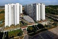 Khu chưng cư Treelodge ở Punggol là thế hệ nhà ở xã hội mới nhất ở Singapore với chất lượng tương đương nếu không phải là cao hơn chung cư cao cấp tại các thành phố khác trong vùng.